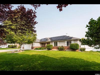 West Jordan Single Family Home For Sale: 1582 W Erickson Park Dr