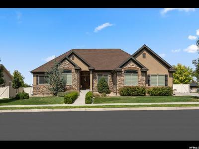 Salem Single Family Home For Sale: 309 E 1000 S