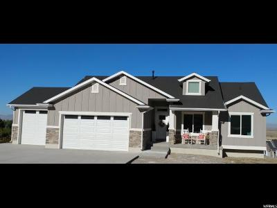 Perry Single Family Home For Sale: 1662 S Valley View Dr