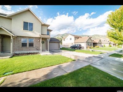 Springville Single Family Home For Sale: 846 W 175 S