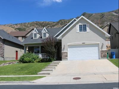 Cedar Hills Single Family Home For Sale: 10392 N Tamarack Way