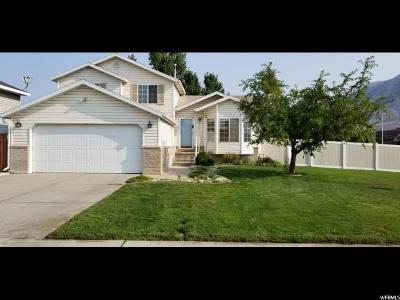 Pleasant Grove Single Family Home For Sale: 1316 W 540 N