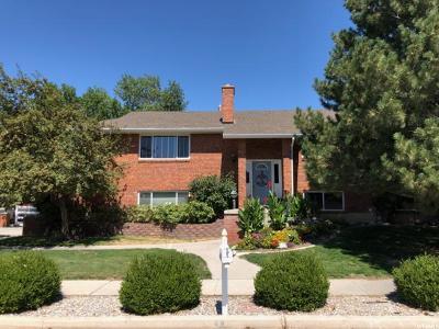 Brigham City Single Family Home For Sale: 482 Camaren Dr