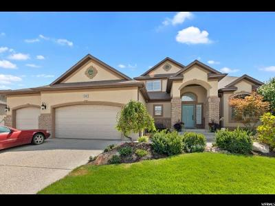 Riverton Single Family Home For Sale: 2763 W Warner Way