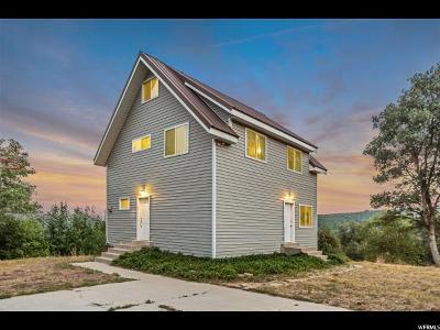 Springville Single Family Home For Sale: 648 N Meadow Cir