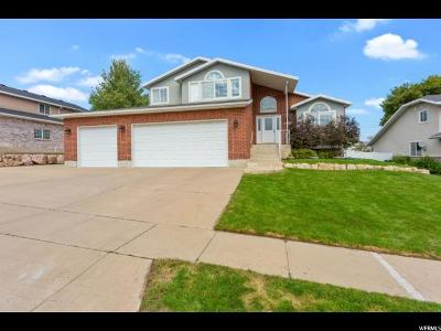 Layton Single Family Home For Sale: 1979 Deere Vw