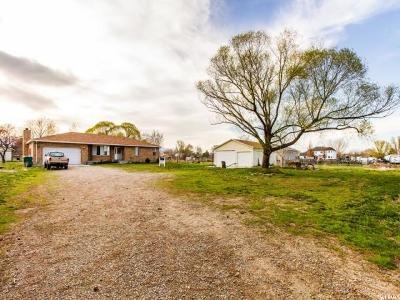 Bluffdale Single Family Home For Sale: 2088 W 14200 S