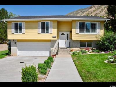 Springville Single Family Home For Sale: 215 E 1300 N