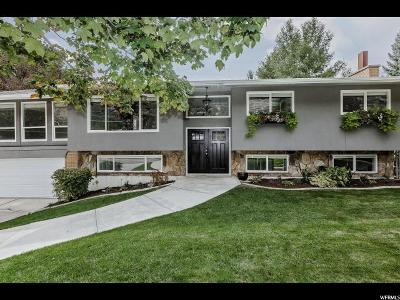 Provo Single Family Home For Sale: 3981 Timpview Dr