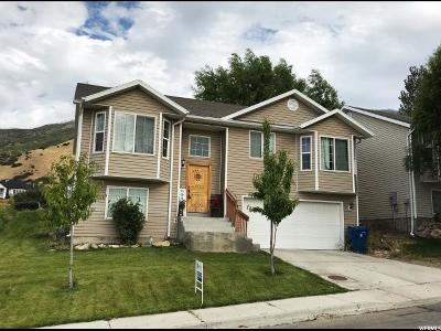 Santaquin Single Family Home For Sale: 158 N Peach St