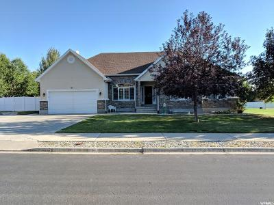 Alpine Single Family Home For Sale: 144 E Allegheny S