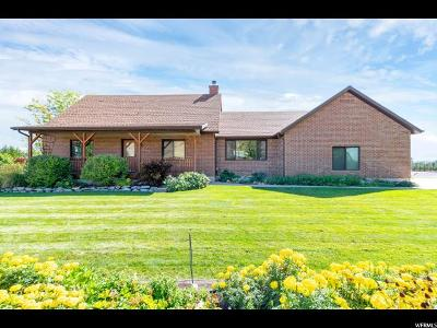 Payson Single Family Home For Sale: 9025 S 5600 W