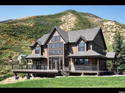 Springville Single Family Home Under Contract: 1481 Valley View Cir