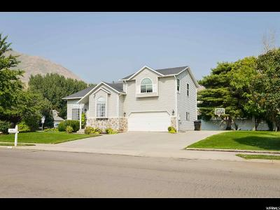 Springville Single Family Home For Sale: 915 S 1400 E