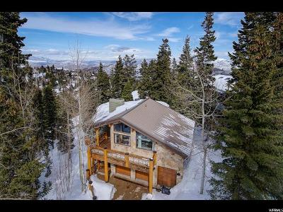 Park City Single Family Home For Sale: 6434 Silver Lake Dr #31