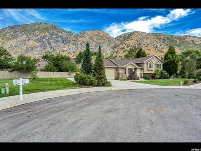 Springville Single Family Home For Sale: 525 E 550 N