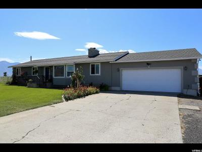 Spanish Fork Single Family Home For Sale: 1967 W 4000 S