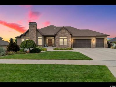 Spanish Fork Single Family Home For Sale: 866 West Park Dr
