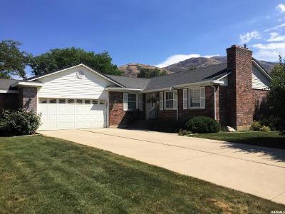 Brigham City Single Family Home For Sale: 235 Jones Dr