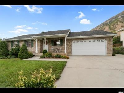 Springville Single Family Home For Sale: 273 E 1150 St N