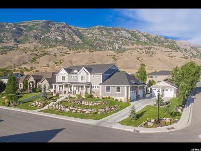 Pleasant Grove Single Family Home For Sale: 1824 N 230 E