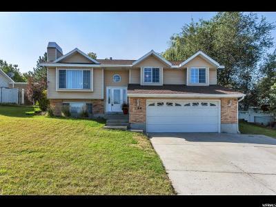 Sandy Single Family Home For Sale: 1108 E 8600 S