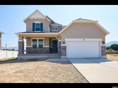 Spanish Fork Single Family Home For Sale: 89 S 950 W