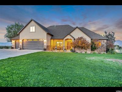 Payson Single Family Home For Sale: 10498 S 5600 W