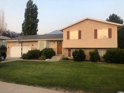 Provo Single Family Home For Sale: 1453 S 810 W