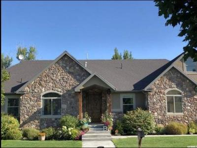 River Heights Single Family Home For Sale: 467 Hawthorne Dr