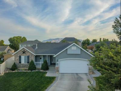 Saratoga Springs Single Family Home For Sale: 551 W Tea Rose Ct