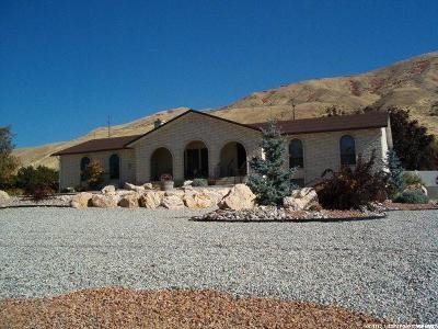 Perry Single Family Home For Sale: 3485 S Highway 89