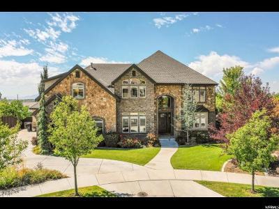 Provo Single Family Home For Sale: 4589 N 425 E
