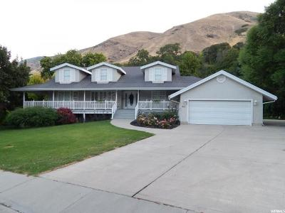 Springville Single Family Home For Sale: 952 S 2400 E