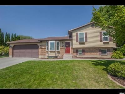 American Fork Single Family Home For Sale: 585 E 520 N