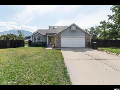 Holladay Single Family Home For Sale: 6405 S Rain Crest Ct