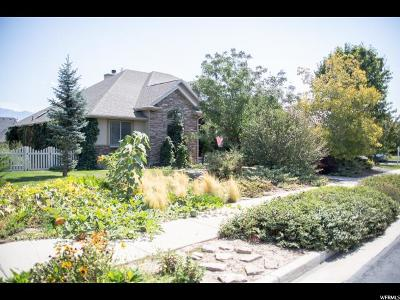 South Jordan Single Family Home For Sale: 10961 S Scotty Dr