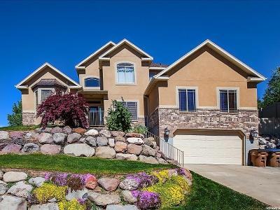 Draper Single Family Home For Sale: 13697 S Tom Shoemaker Rd
