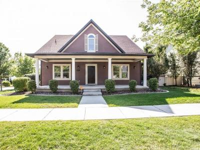 South Jordan Single Family Home For Sale: 4707 W Copper Sky Dr S