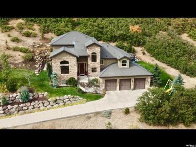 Draper Single Family Home For Sale: 1487 E Deer Ridge Dr