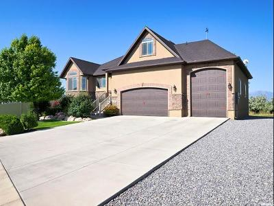 Lehi Single Family Home For Sale: 288 Willow Ln