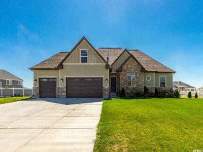 Eagle Mountain Single Family Home For Sale: 1558 E Bitterbrush Ln