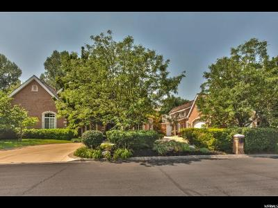 Provo Single Family Home For Sale: 4367 N Vintage Dr