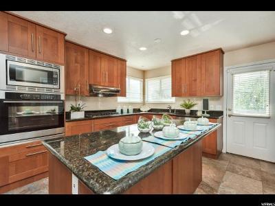 Sandy Single Family Home For Sale: 1128 E Castle Rock Rd S