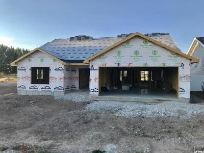 Preston Single Family Home For Sale: 319 E 260 N