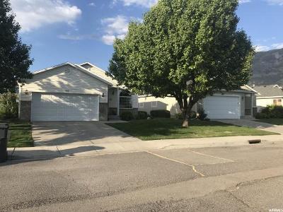 American Fork Single Family Home For Sale: 923 E 1520 N