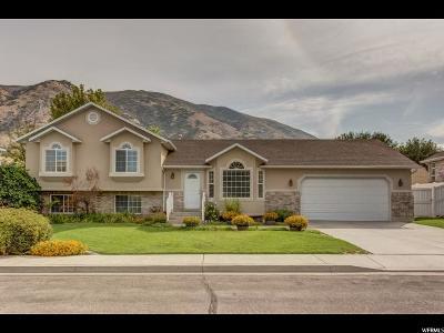 Springville Single Family Home For Sale: 326 N 525 E