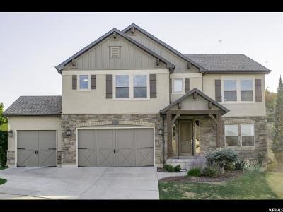 Draper Single Family Home For Sale: 14738 S Woods Landing Ct E