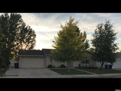Payson Single Family Home For Sale: 1186 S 880 Dr W #27