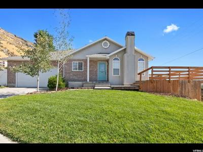 Provo Single Family Home For Sale: 1254 Nevada Ave
